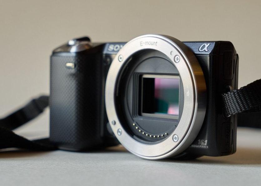 клуб отличие беззеркалок от зеркальных фотоаппаратов ребята талантливые профессиональны